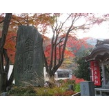 『高尾山の紅葉』の画像