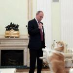 【動画】プーチンが日本メディアのインタビューに秋田犬「ゆめ」を連れて登場! [海外]