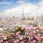 Le Ruban* blog