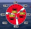 魚「タダですw」 漁師「原価タダだから丸儲けwwww」←こいつらが許されてる理由