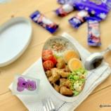 『フィリピン料理・アドボのお弁当』の画像