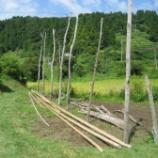 『今年は稲木場を増やしました』の画像