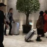 『【乃木坂46】中国人が『コンノー』呼びw 上海から帰国する今野義雄氏とメンバーの様子がこちらwwwwwww【動画あり】』の画像