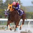 『【金沢・北国王冠】ハクサンアマゾネスが断然人気に応え重賞3連勝』の画像