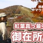 『鈴鹿セブンマウンテン 紅葉の御在所岳に行ってきました⭐︎動画編』の画像