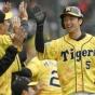 【朗報】阪神タイガース、ガチのマジで来年優勝ありそう