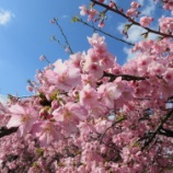 『3月スタート💨』の画像