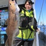 『3月 7日 釣果 スーパーライトジギング マダラとメバル✊』の画像