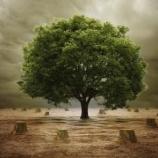 『環境問題から撤退する米国』の画像