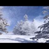 『美しい地吹雪』の画像