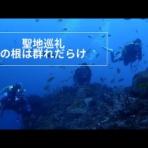 伊豆ダイビング情報@宝島  体験ダイビング毎日開催 女性・シニアにもおすすめ!