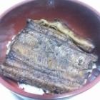 『一日遅れの鰻ちゃん』の画像