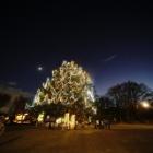 『新製品:LAOWA9mmF5.6の試写~クリスマスツリー・月・火星・木星・土星 2020/11/30』の画像