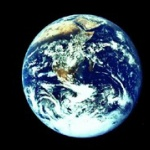 この世の生物全員に「この世から絶滅してほしい生き物」ってお題でアンケートとったら