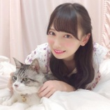 『[ノイミー] 鈴木瞳美「愛猫のじろう 〜、ずっとそっぽ向いておる …」』の画像