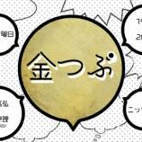 『【乃木坂46】ついに詳細が解禁!!!歴代MCメンバーも勢揃い!『金つぶ』単行本 内容が明らかに!!!』の画像