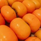 『【乃木坂46】柿の次はみかんが配られるグループwwwwww』の画像