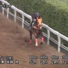 『マーメイドステークス2020 【最終追いきり分析】荒れるハンデ重賞!〜調子のいい馬を狙い撃ち〜』の画像