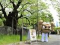 【悲報】岩手、ポケモンブームに乗っかってしまう (画像あり)