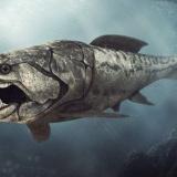 【画像】3億年前の海を支配していた魚、怖すぎるだろ・・・・