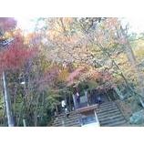 『紅葉も終盤。』の画像