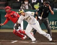 【阪神】2位井上が抹消 初の1軍11打数1安打5三振。