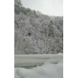 『真っ白け☆☆☆』の画像