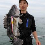 『5月 6日 釣果 スロージギング サバ!!』の画像