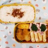 『アメリカdeお弁当⑪』の画像