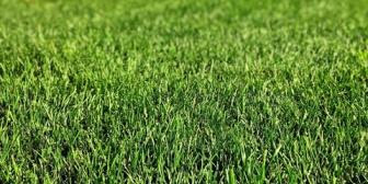 庭にしようと思う部分が7m×10mくらいあって今は砂利になってる。ここに人工芝でも敷こうと思うんだけど、自力で出来るだろうか…