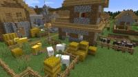 湖畔に佇む平原の村を造る (8)
