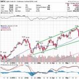 『原油価格急落も投資家は悲観的にならなくてもいい理由』の画像