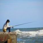 意外に多い「釣り人に人気ない魚」「流通せずに地元のみで食べられる魚」とは?