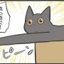 撮影禁止だった猫のポーズ
