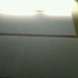 『大阪市港区市岡にある賃貸マンションの畳の新調入替え〜』の画像