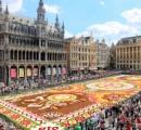 世界遺産の広場に50万本の花じゅうたん