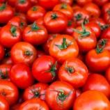 『医師が食べる健康食 第1位「トマト」2位「ヨーグルト」3位「納豆」』の画像