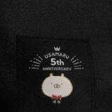 『【うさまるグッズ紹介】5th Anniversary ビッグショルダーバッグ【使ってみた感想】』の画像