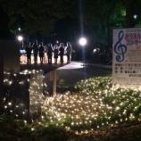 『上戸田イルミネーションが点灯!2月24日までイルミネーションの光の道が後谷公園内に登場です!』の画像