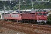 『2014/6/25運転 キハ48形2両配給輸送(北陸本線)』の画像