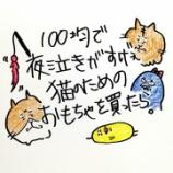 『👶100均で夜泣きがすげぇ猫のためのおもちゃを買ったら👶』の画像