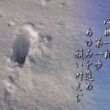 『フォト短歌「第一歩」』の画像