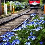 『あじさい電車』の画像