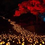 『第15回(2014年)たけた竹灯篭「竹楽」』の画像