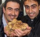 世界最大?のトリュフ発見 イタリア北部、1・4キロ