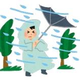 『台風の嵐の中で肉まん食うババア現る』の画像