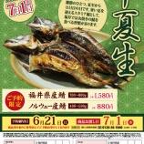 『2020 半夏生の焼き鯖 ご予約受付中!(6/21まで)』の画像