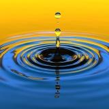 彡(゚)(゚)「おでこに水滴を落とす拷問?余裕やんけ」→結果wwww