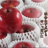 『リンゴとみかん大福』の画像