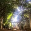明日香村再訪記② 諸願成就と病気平癒にご利益 櫛玉命(くしたまのみこと)神社